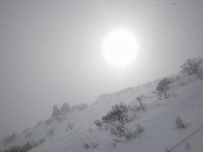 20080302_kurodake01